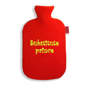 hot-water-bottle-substitute-prince